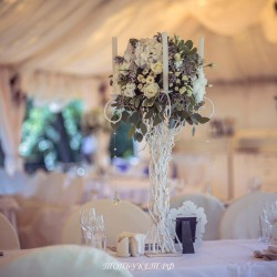 Свадебное оформление №0030 ( Свадьба в коттедже )