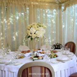 Свадебное оформление №0062 ( Свадьбный декор )